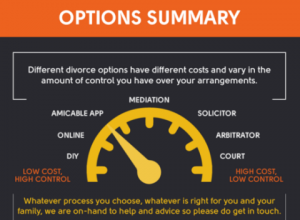 Options summary info graphic