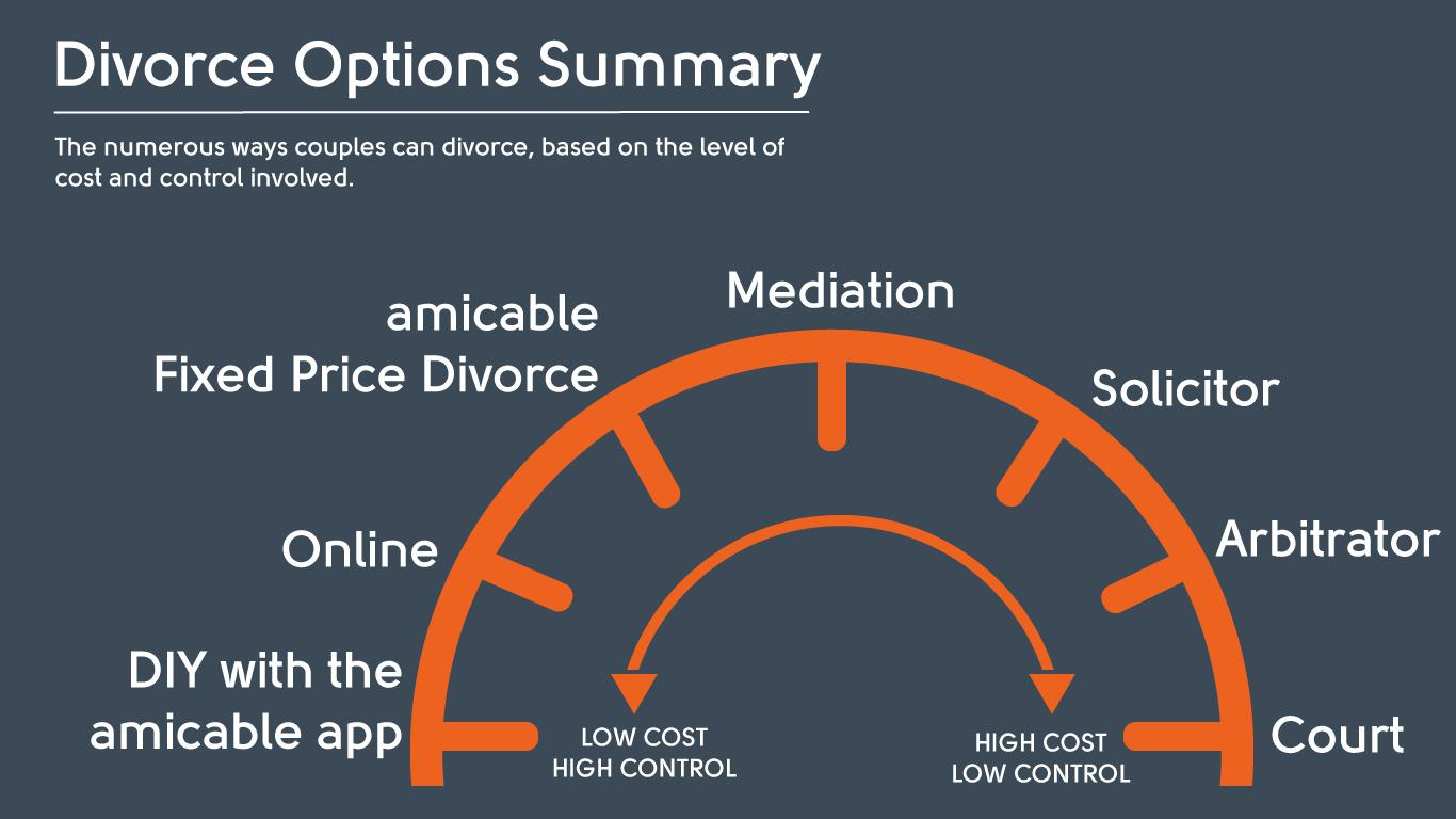 options summary